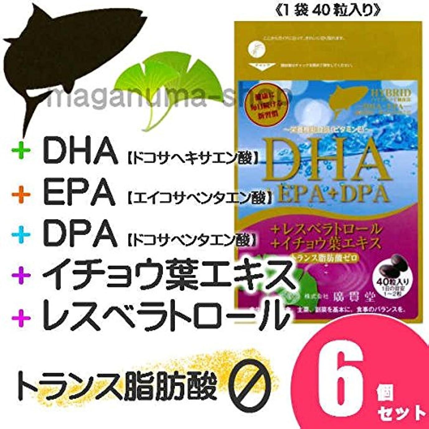爆風ラメ差別的DHA+EPA+DPA+レスベラトロール+イチョウ葉エキス 6個セット