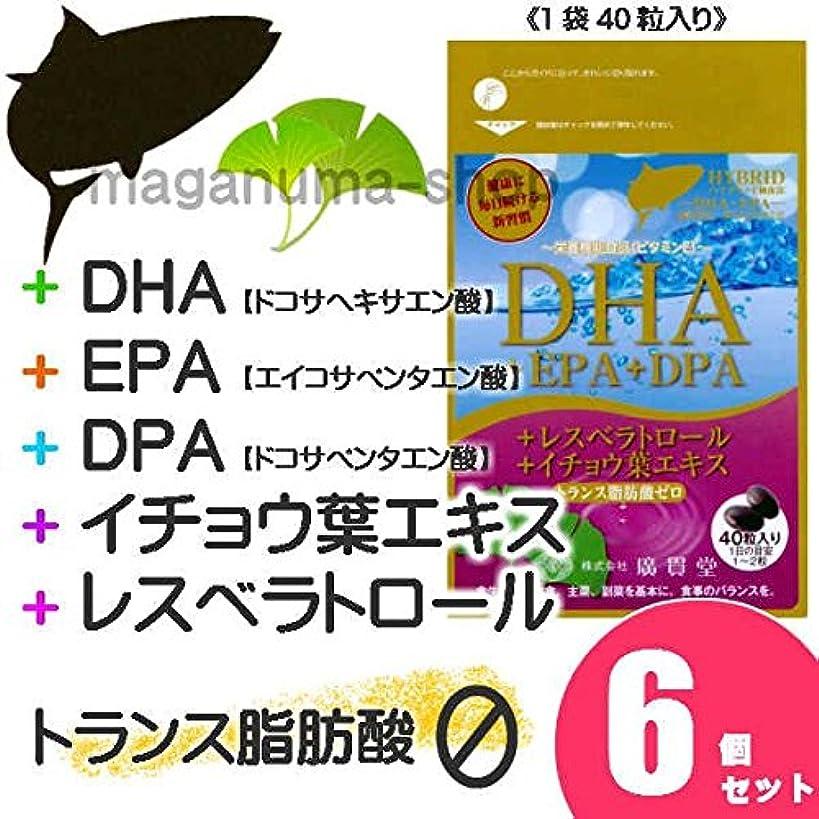地球赤反逆者DHA+EPA+DPA+レスベラトロール+イチョウ葉エキス 6個セット