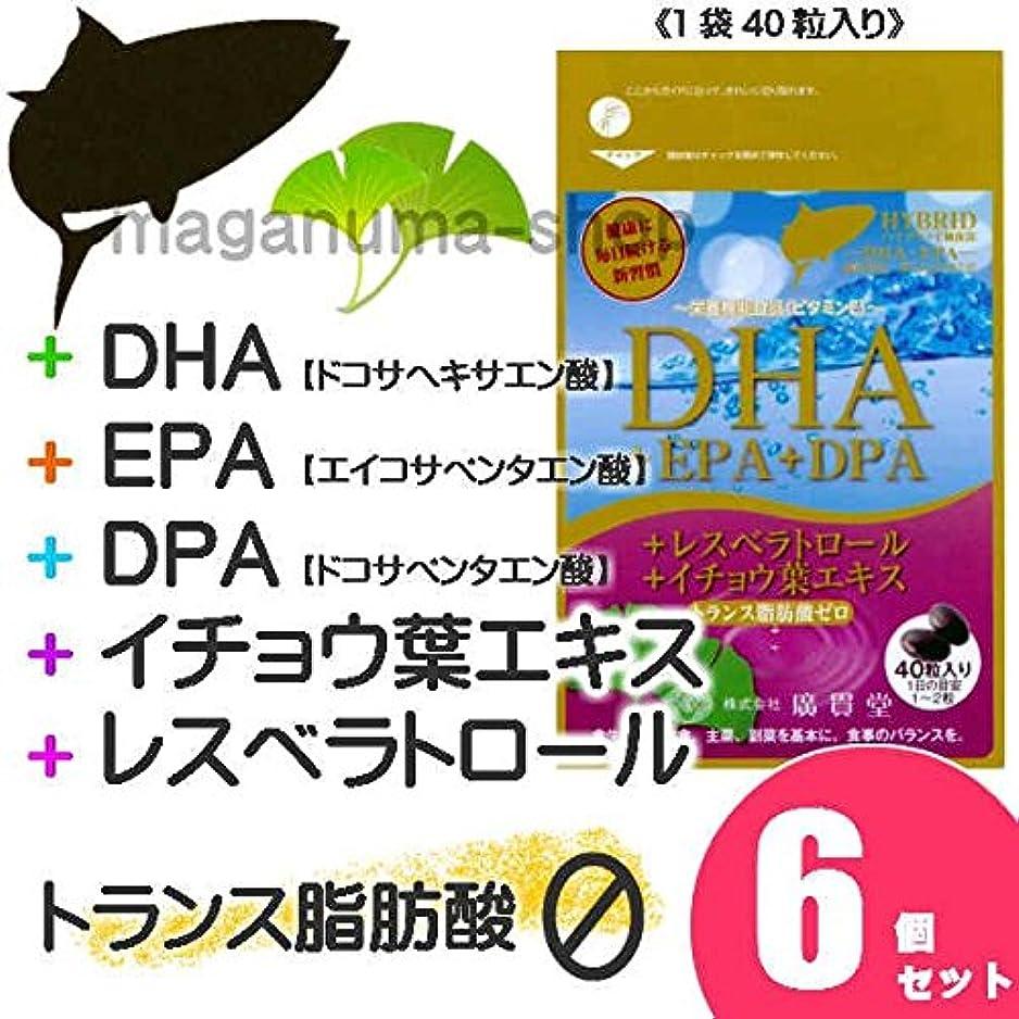 軍団川力学DHA+EPA+DPA+レスベラトロール+イチョウ葉エキス 6個セット