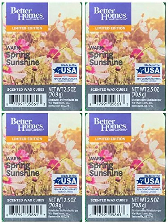 パテ記憶に残る知覚するBetter Homes and Gardens Warm Spring Sunshineワックスキューブ – 4 -パック