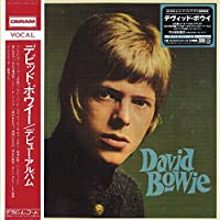 David Bowie【2018 RECORD STORE DAY 限定盤】(輸入盤国内仕様 / 2枚組アナログレコード)