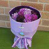 【母の日限定】 フラワーショップヤーミー特選・サントリーの青いカーネーションの花束:ムーンダス...