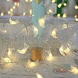 MyBuddy Moon String Lights,Outdoor LED String Lights 10FT Set of 20 LED for Wedding Garden Decoration,Party Festival Lights,