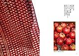 インドの更紗手帖: 世界で愛される美しいテキスタイルデザイン 画像