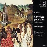 Cantatas for Alto Bwv 35 54 & 170