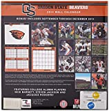 Turner - Perfect Timing 2014 Oregon State Beavers Team Wall Calendar, 12 x 12 Inches (8011384) by Lang Holdings, Inc. [並行輸入品] 画像