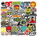 Skateboard Stickers Pack Cool Decals 100pcs for Laptop Teens Sticker
