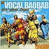 ヴォーカル・バオバブ/ヨルバの夢 [日本語帯付輸入盤] (AFRO - CUBAN CHANTS, YORUBA DREAM)