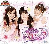 炎神戦隊ゴーオンジャー G3プリンセス CD-BOX