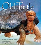 Old Turtle (Lessons of Old Turtle)