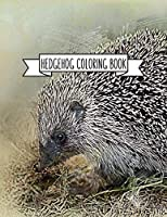 Hedgehog Coloring Book: Hedgehog Lover Gifts for Toddlers, Kids or Adult Relaxation |  Cute Stress Relief Animal Birthday Coloring Book Made in USA