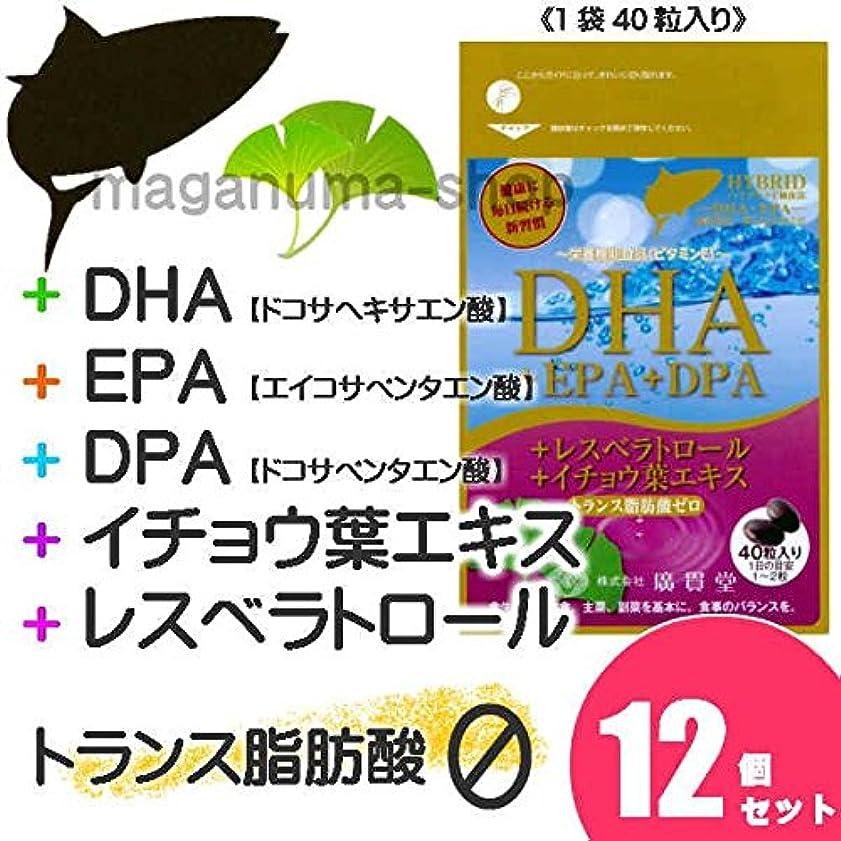 咽頭閲覧するバックアップDHA+EPA+DPA+レスベラトロール+イチョウ葉エキス 12個セット