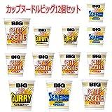 日清食品 カップヌードル big ビッグ ヌードル味 カレー味 シーフード味 12食セット