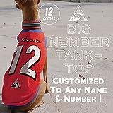ビッグナンバータンク 背番号 ユニフォーム 名入れ メッシュタンクトップ#2 イタリアングレーハウンド服 犬服 (タイプK(ダークブルー×ピンク), S)