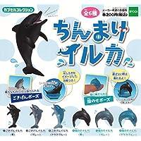 ちんまりイルカ 全6種セット ガチャガチャ