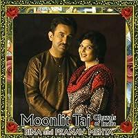 Moonlit Taj