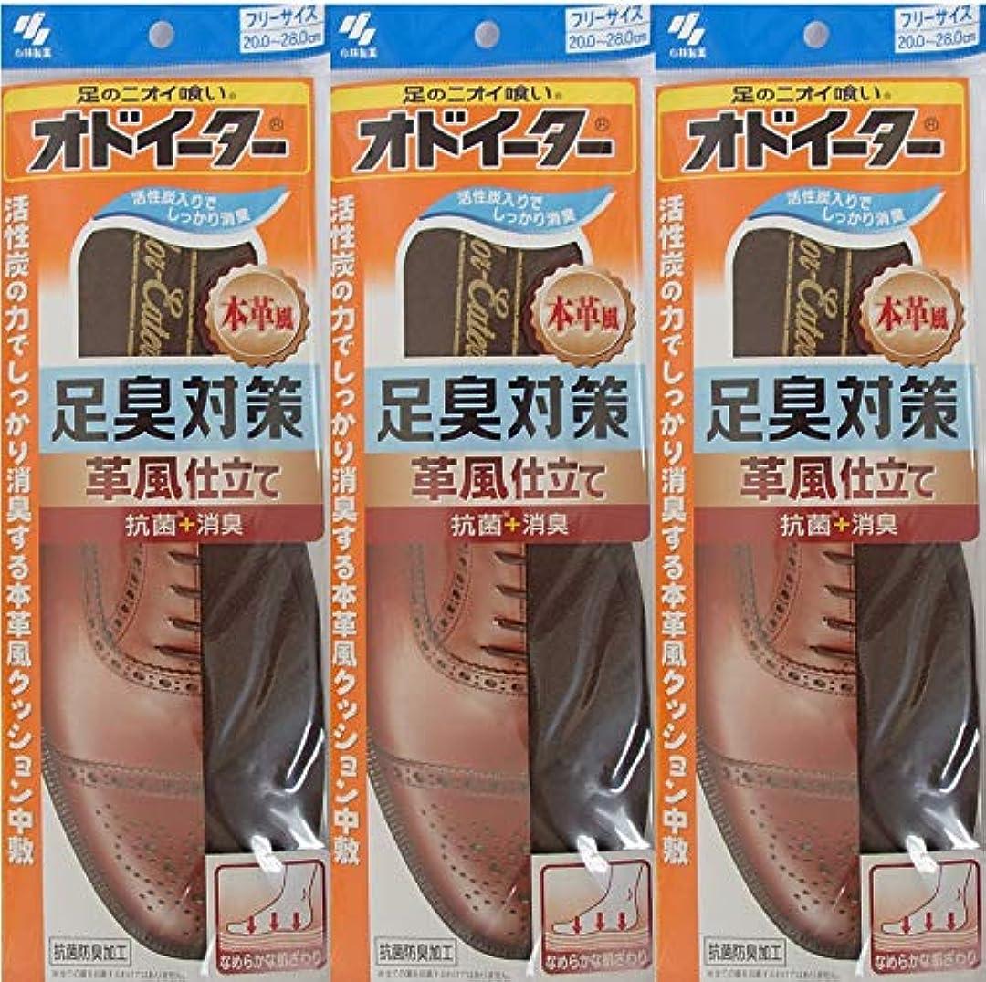 樫の木ホットバックオドイーター 足臭対策 革風仕立て インソール フリーサイズ20cm~28cm 3足セット