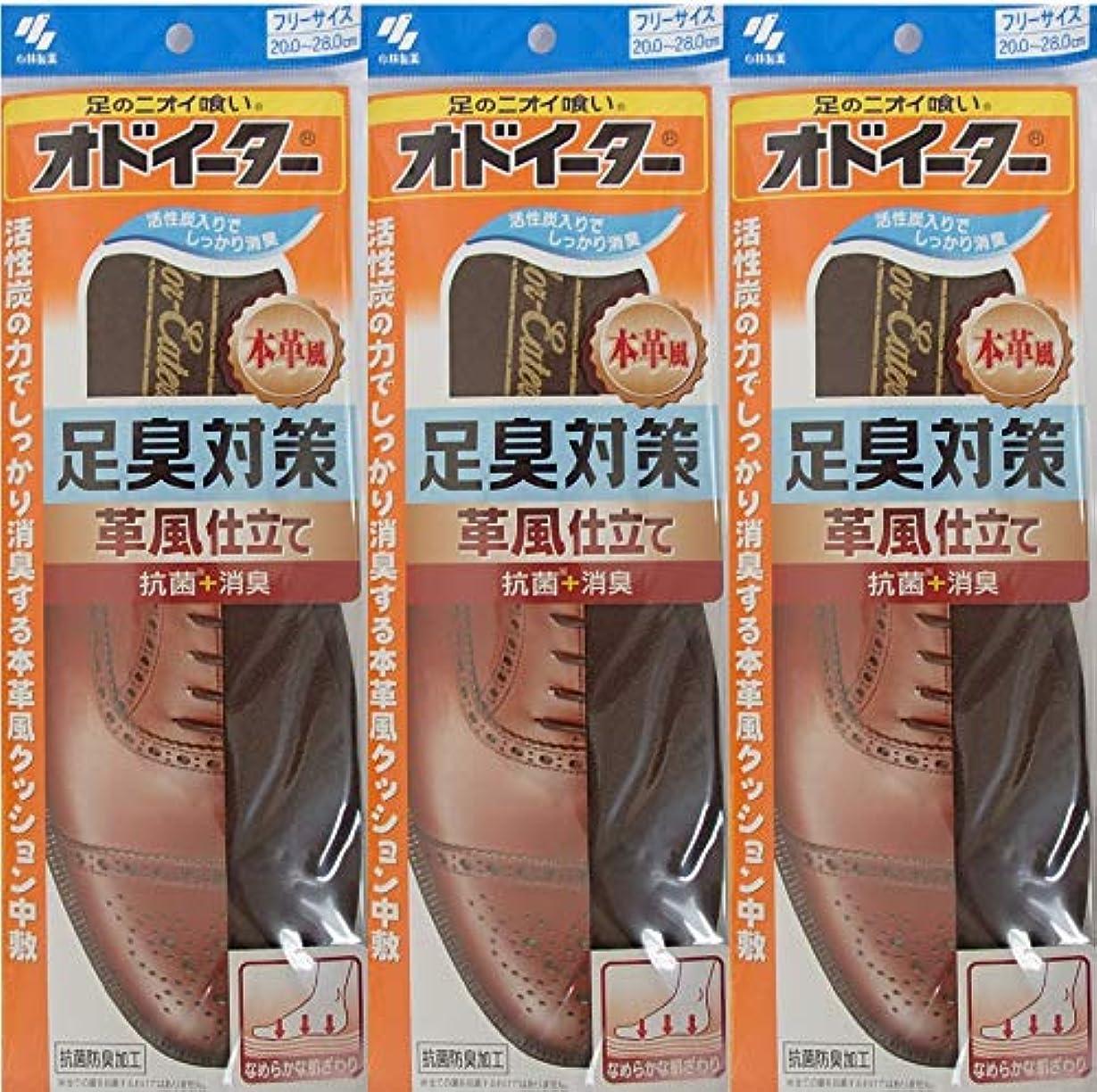 換気する申し立て浸漬オドイーター 足臭対策 革風仕立て インソール フリーサイズ20cm~28cm 3足セット