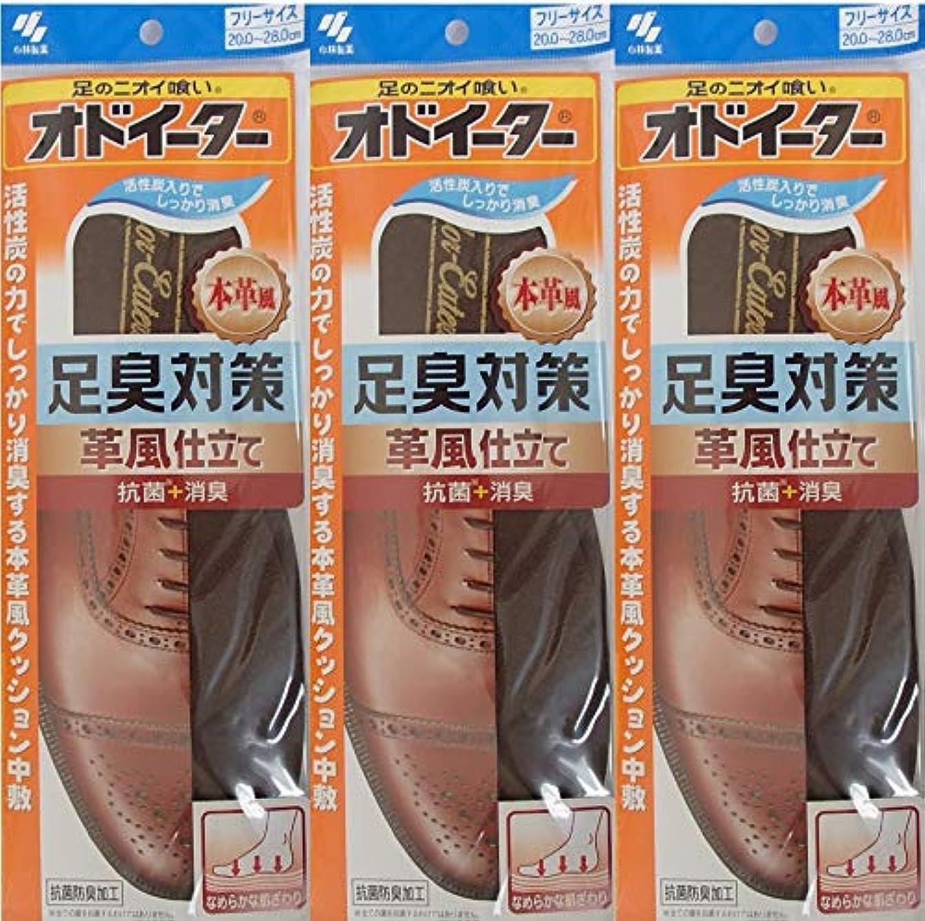 意気揚々強制的カーペットオドイーター 足臭対策 革風仕立て インソール フリーサイズ20cm~28cm 3足セット