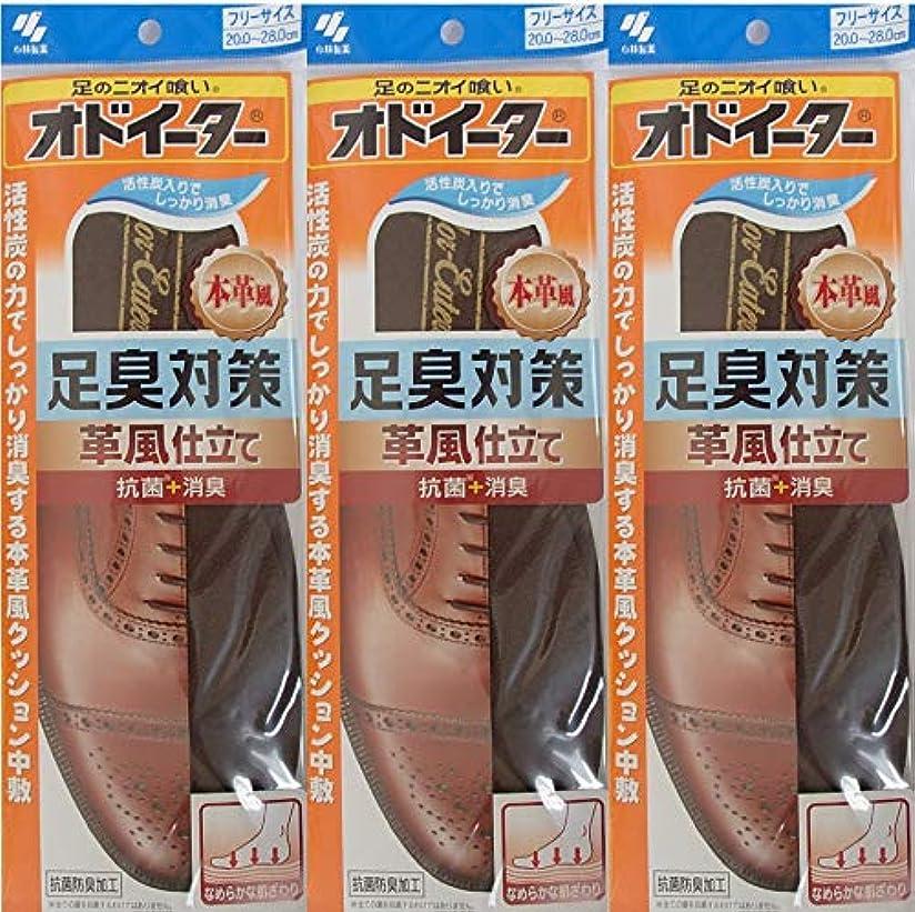慣れるコインブリードオドイーター 足臭対策 革風仕立て インソール フリーサイズ20cm~28cm 3足セット