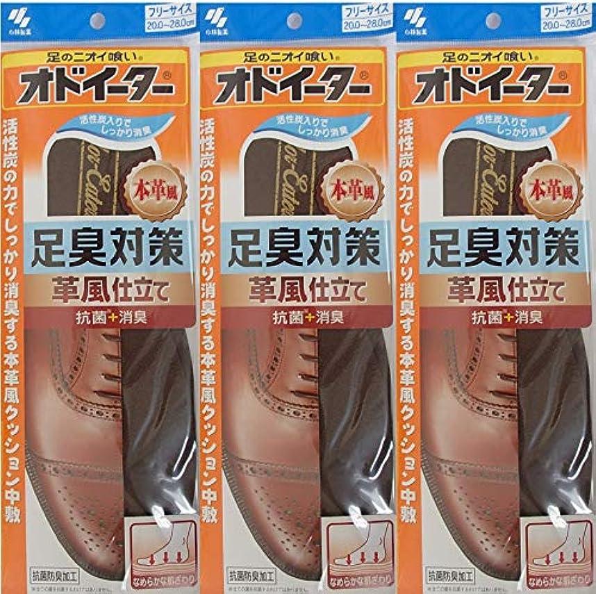 整理する分類する食い違いオドイーター 足臭対策 革風仕立て インソール フリーサイズ20cm~28cm 3足セット