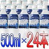 ミネラルウォーター「立山連峰 雪どけ水」(500ml×24本) 水 お水 ナチュラルミネラルウォーター 天然ミネラル水 軟水