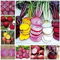 200個の盆栽ビーツ屋外庭プランタボルタディジューシービートルート有機のおいしい野菜鉢植えの花鉢の植物:混合