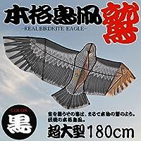 超大型180cm鳥凧『鷲』ブラック