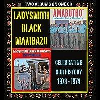 Celebrating Our History: Amabutho & Isitimela
