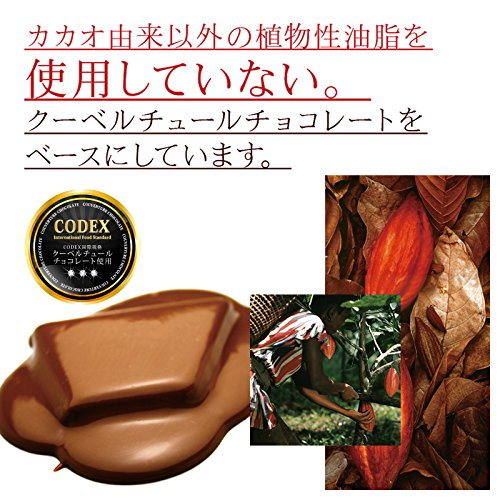 割れチョコ ホワイト お試し300g チュベ・ド・ショコラ 選べる1000円ポッキリ