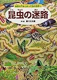 昆虫の迷路 秘密の穴をとおって虫の世界へ