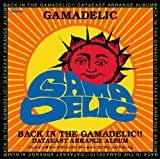 BACK IN THE GAMADELIC!!~DATAEAST ARRANGE ALBUM~
