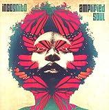 Amplified Soul 画像