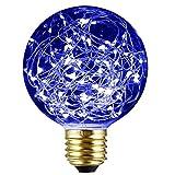 Best ヴィンテージクリスマスデコレーション - SUNDY エジソン装飾電球 ヴィンテージスタイル G95 E26 110V-120V 1.6-2W LED Review