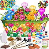 Innorock Kids Flower Planting Growing Kit - Kids Gardening Plant and Paint Arts Crafts Set for Girls Boys Age 5 6 7 8 9 10-12 Year Old Plant Garden Set Make Your Own Planter Tools Kits Science STEM