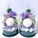 即日出荷対応 紫苑一対 お供え プリザーブドフラワー コルクガラスドーム 仏壇用 飾り