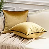 Avigers Pack of 2 Luxury Warp-Knitted Velvet Solid Soft Decorative Square Throw Pillow Covers Set Cushion Case for Sofa Bedro
