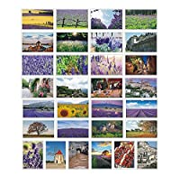 美しい旅行風景30 PCS芸術的なレトロなポストカード - ロマンチックなラベンダー