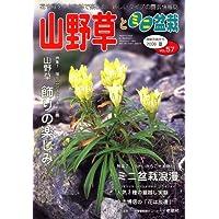 山野草とミニ盆栽 2006年 09月号 [雑誌]
