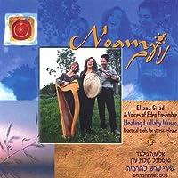 Noam-Healing Lullaby Music