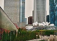 シカゴ350ジェシカ・Levant写真都市景観Illinoisポスター(選択サイズ、印刷またはキャンバス) 28x20 Unstretched Canvas IC-L805D28X20C
