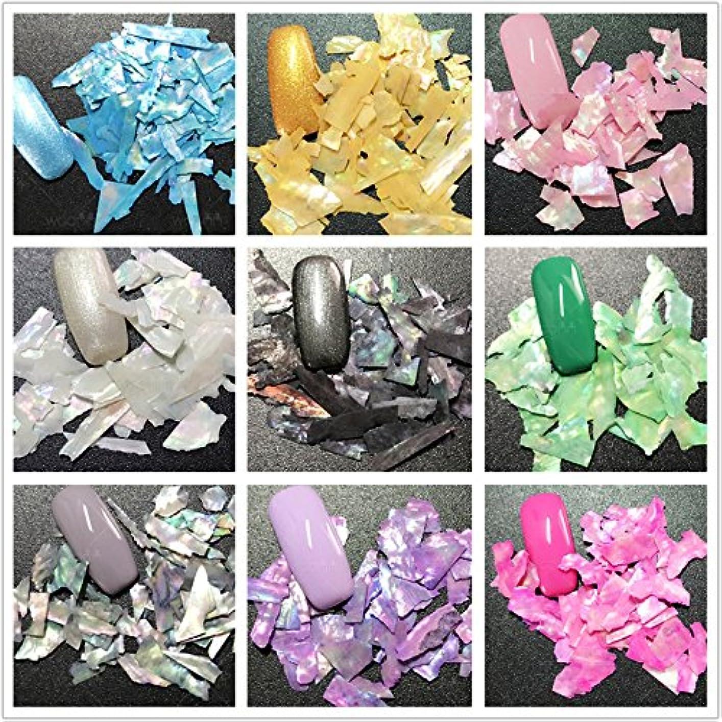 る適度に灌漑12色選択可能 カラフル 人魚 天然 貝殻 クラッシュ シェル ネイルアート デコレーション UVジェル ネイルパーツ ネイルサロン (12colors) [並行輸入品]