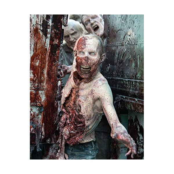 The Walking Dead: The P...の紹介画像6