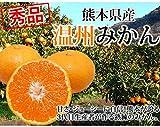 みかん 送料無料 温州みかん 秀品 10kg M~3L 熊本県産 蜜柑 ミカン