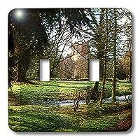 3drose LSP _ 44117_ 2のBlarneyの城アイルランドのバックグラウンドでwith Trees and Lush Greens inフロントダブル切り替えスイッチ