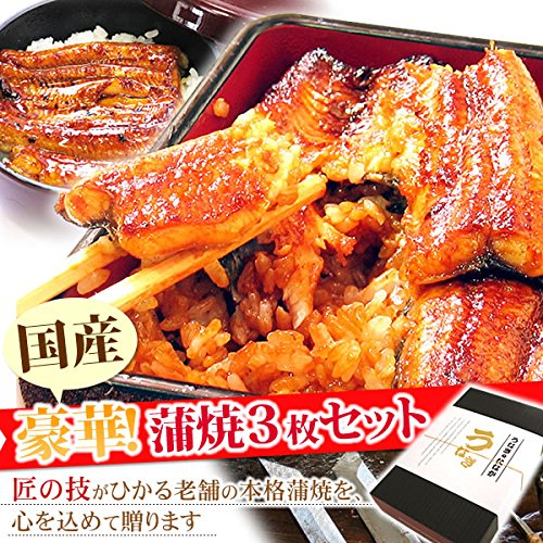 ギフト うなぎグルメギフト 国産鰻(うなぎ)蒲焼 3枚