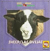Sheep/ Las Ovejas: Animals That Live On the Farm = Animales Que Viven En La Granja