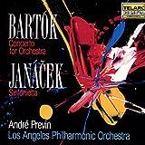 Concerto for Orchestra / Sinfonietta 画像