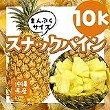 沖縄県産 【スナックパイン】10kg入り(約12~16玉)サイズ混合