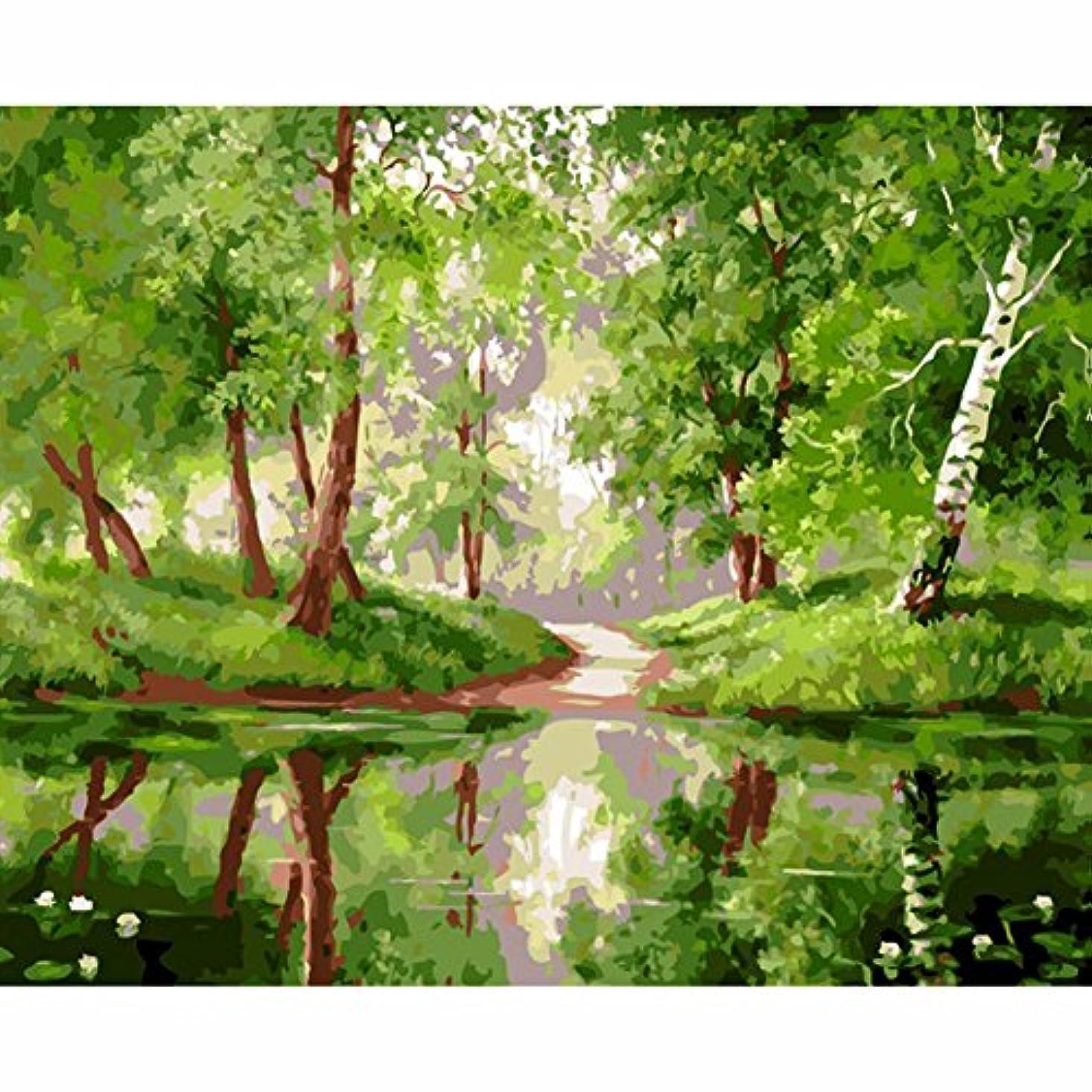 俳句ひねり司書LovetheFamily 数字油絵 数字キット塗り絵 手塗り DIY絵 デジタル油絵 青い森の反射 40x50 cm ホーム オフィス装飾